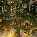 クリスマスツリー*゚☆彡* 金沢駅