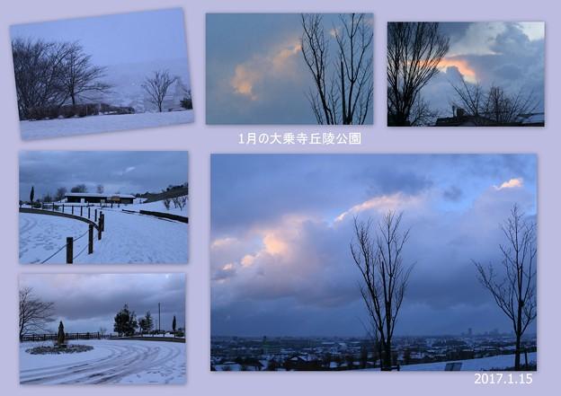1月の大乗寺丘陵公園 雪