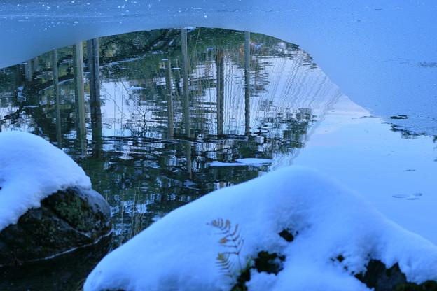 雪の兼六園 霞ヶ池に唐崎松