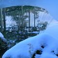写真: 雪の兼六園 霞ヶ池に唐崎松