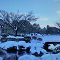 写真: 雪の兼六園 徽軫灯籠と虹橋