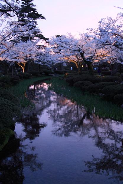 Photos: 兼六園 花見橋より 夕景とライトアップ