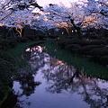 兼六園 花見橋より 夕景とライトアップ
