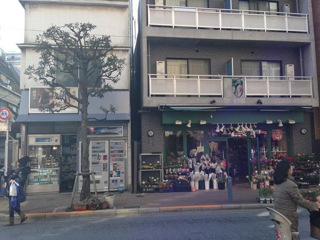 渋谷凛の家