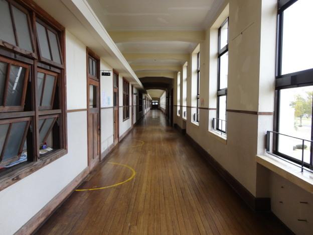豊郷小の廊下