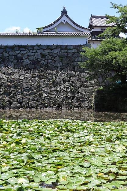 福岡城跡(2)