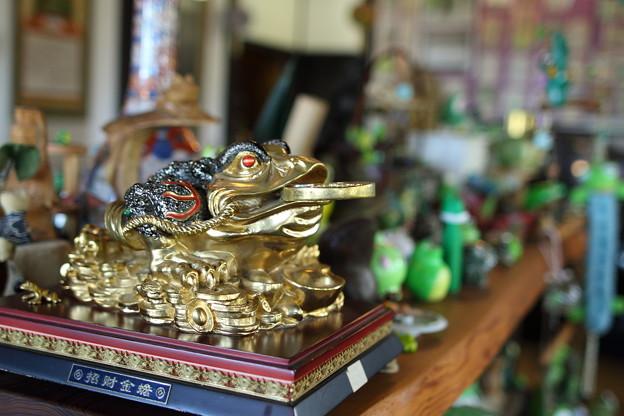 かえる寺のかえる部屋(7)