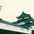 和歌山城と城壁