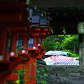 貴船神社の連燈籠