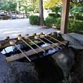 Photos: 伊弉諾神宮 手水舎