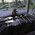Photos: 狭井神社 手水舎