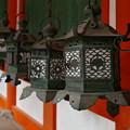 廻廊の燈籠