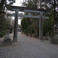 Photos: 大和神社 鳥居