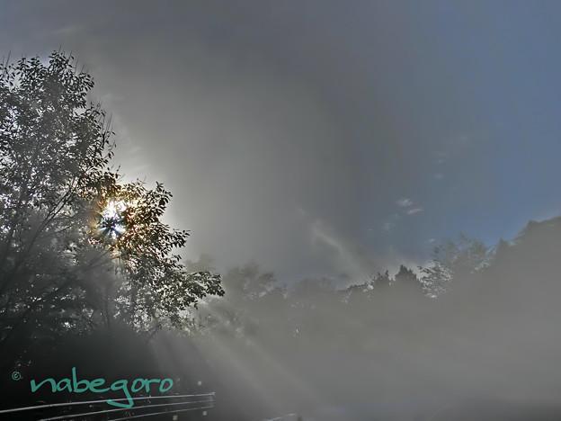 雲の中の光