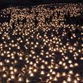 写真: かまくら祭りIMGP2479