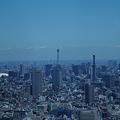 写真: 新宿から見えたスカイツリー