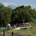Photos: 初夏の案山子村`15-2