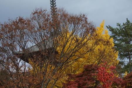 秋の奈良市内0007