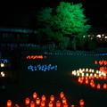 橿原神宮の写真0115