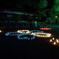 橿原神宮の写真0117