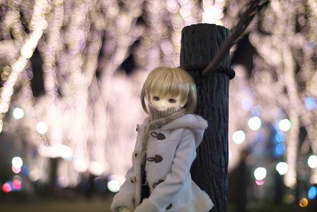写真: P1330060_s