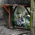 Photos: 動物園-5835