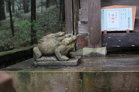 瀧尾神社_04兎-6723