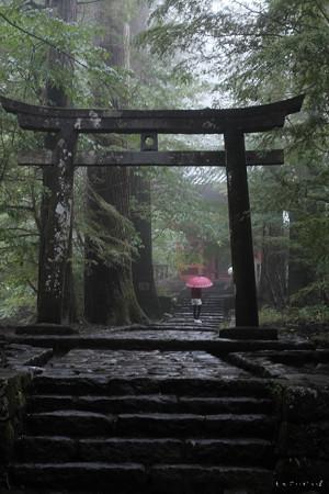 瀧尾神社_13鳥居-6752