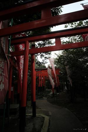 東伏見神社01鳥居-0052