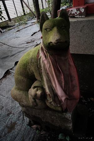 東伏見神社05狐さん-0051
