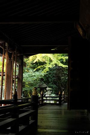 神明神社04_縁-1684