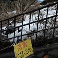 写真: 03落雪注意-3495