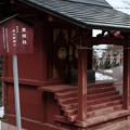 写真: 20_1東照社-3593