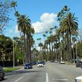 Photos: LA