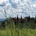 Photos: Montalcino
