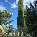 Photos: San Leonino