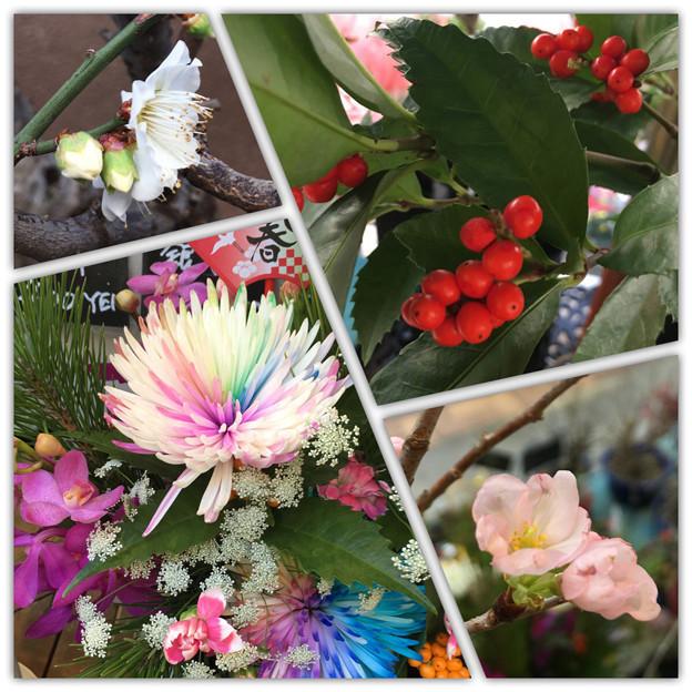 Photos: flowers