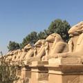 Photos: Egypt