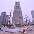 魚眼・・ランドマークタワーと旧日本丸 総帆展帆。。横浜開港記念日