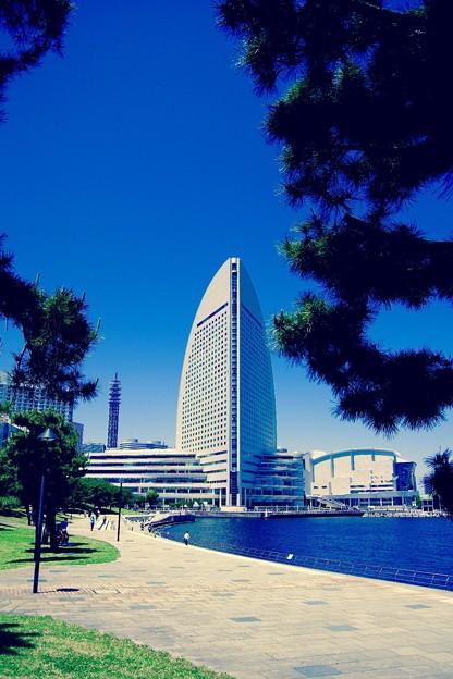 写真: 横浜新港から見る青空の下。。パシフィコ横浜 5月30日