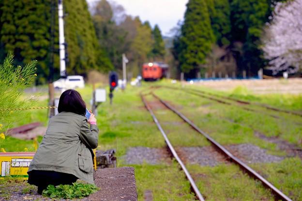 君の見る先は。。いすみ鉄道キハ52。。20160409