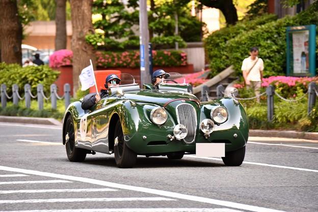RALLY YOKOHAMA 名車 jaguar XK120roadster。。in山下公園 20160521
