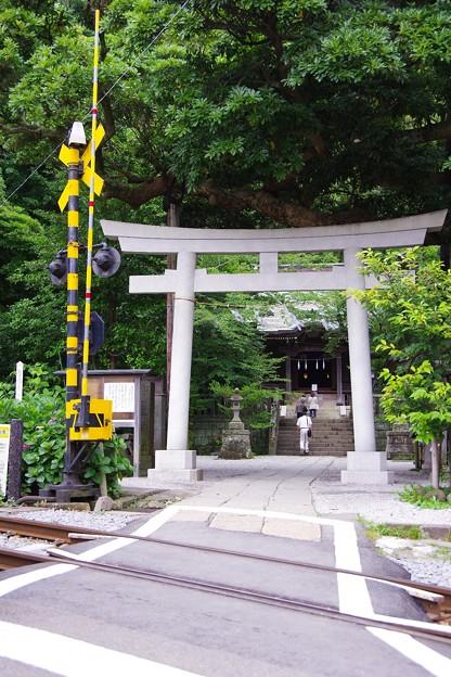 江ノ電の踏切渡ると神社へ。。御霊神社 20160624