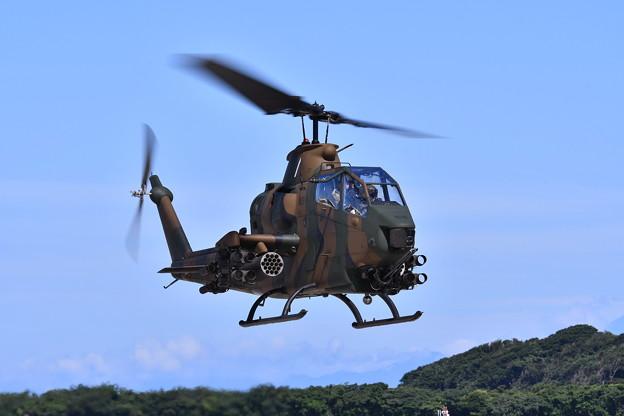 木更津駐屯地のコブラ飛来。。