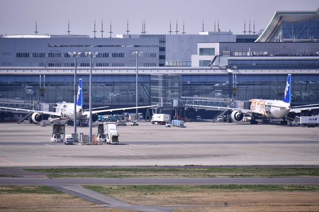 撮って出し。。国際線ターミナルに2機スターウォーズ並ぶ3月25日