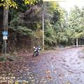 写真: R169伯母谷峠旧道のおにぎり