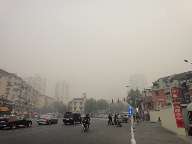 PM2.5  (5)