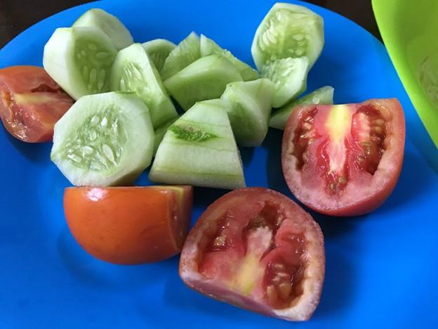 自炊のガーリックライスとサラダ (3)