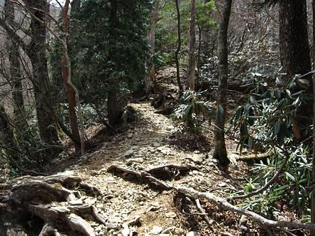 c-110504-122432 登山道の様子