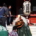Photos: 神田神社(神田明神:東京都千代田区)